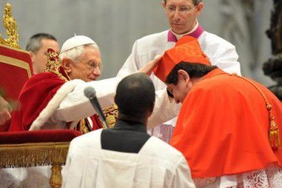 """Braz de Aviz: """"""""El Papa ha entendido a la humanidad"""""""