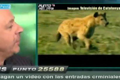 TV3 compara a los jugadores del Real Madrid con hienas e indigna a Hermel