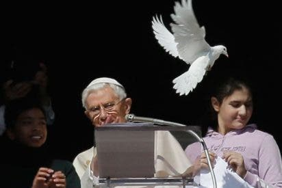 El ideario de Benedicto XVI