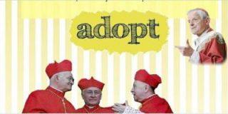 Adopta a un cardenal