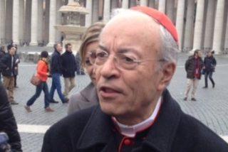 """Los cardenales agradecen al Papa emérito """"su incansable trabajo por la viña del Señor"""""""