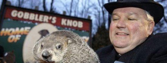 Un fiscal de Ohio pide la pena de muerte para la marmota Phil por errar en el pronóstico del tiempo