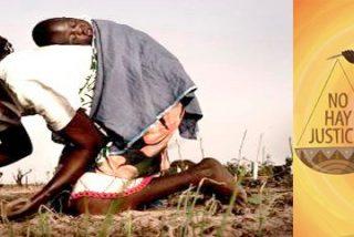 Más de 650 millones de mujeres, condenadas al hambre y la pobreza cada año