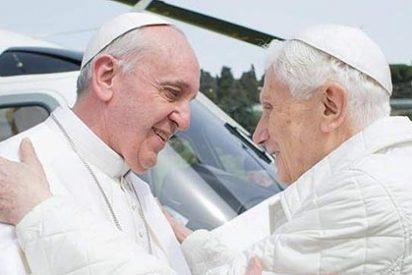 Francisco vuelve a llamar a Benedicto
