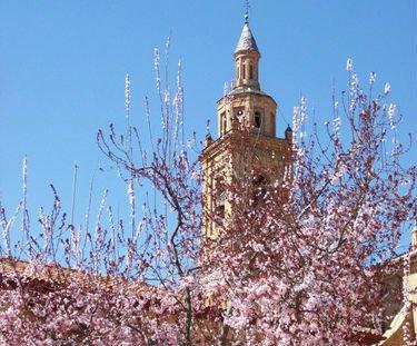 Propuesta para una primavera en la Iglesia Católica