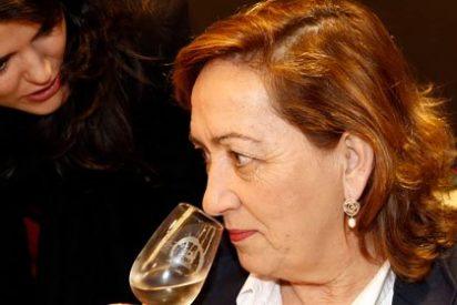 El Gobierno amplía el plazo de reestructuración de viñedo