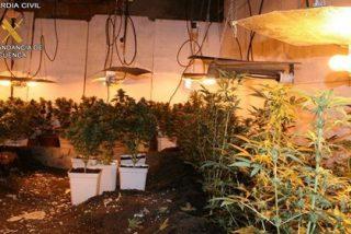 Detenido tras atrincherarse con un arma durante ocho horas en una plantación de marihuana