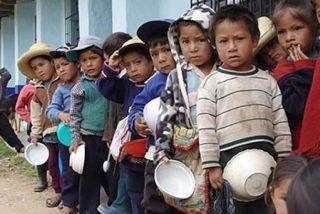 """Cáritas: """"La alimentación no es una dádiva, sino un derecho humano"""""""