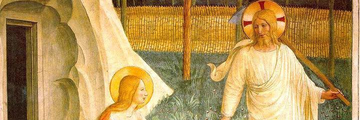 """El Papa Francisco propone a María Magdalena como """"ejemplo para el camino de la vida"""""""