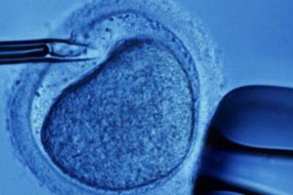 La Santa Sede aboga por una investigación bioética a largo plazo