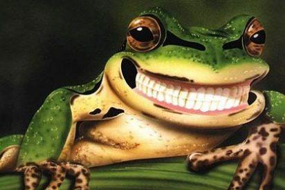 Las ranas tenían dientes, pero los perdieron más de 20 veces en su proceso evolutivo