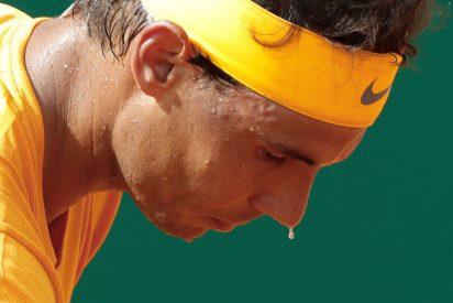 El ruso Medvedev arrebata el 'número 2' del ATP a Rafa Nadal