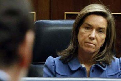 El PSOE vuelve a reclamar la dimisión de Mato por su viaje pagado por la Gürtel