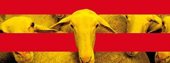 El frente catalanista contra la Ley Wert y la batalla de Rajoy con sus barones