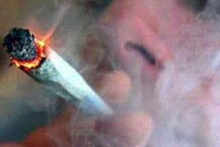 Planta marihuana en el garaje de su casa y 'coloca' durante meses a una familia vecina