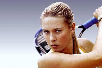 El compañero de entrenamiento de Sharapova tiene prohibido enamorarse de ella... por contrato