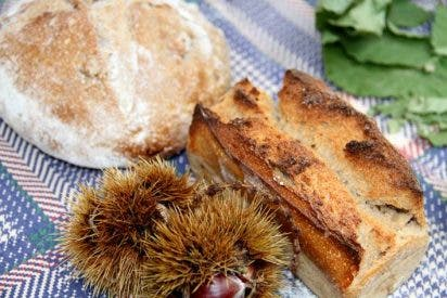 Elogio de los Mercados: Quintaou (Anglet, Pireneos Atlánticos, Francia)
