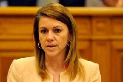 Ni educación, ni empleo, ni estatuto… A PP y PSOE les une el sector farmacéutico