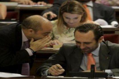 """'Capón' de EU a Bauzá por """"manipular"""" los datos sobre la elección de lengua en colegios"""