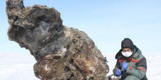 Encuentran sangre líquida en un mamut congelado y los científicos quieren clonarlo