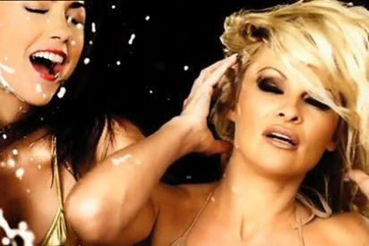 Retiran en Inglaterra un anuncio de Pamela Anderson por sexista