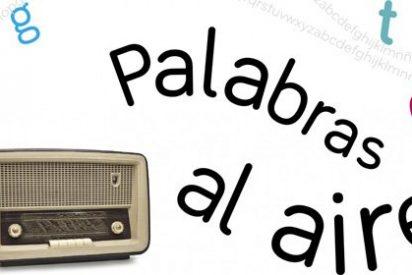 Sagrario Fernández-Prieto y las frases más hilarantes que salen magacines, prensa e internet