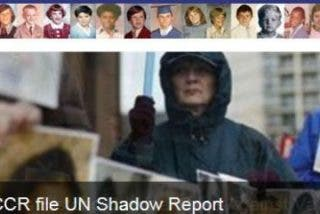 Denunciarán ante la ONU los abusos sexuales del clero católico