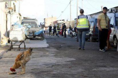 Nuevo golpe policial al narcotráfico en el 'inamovible' poblado gitano de Son Banya