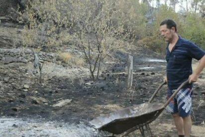 Dejan en libertad al insensato de la barbacoa que causó el fuego en Serra de Tramuntana