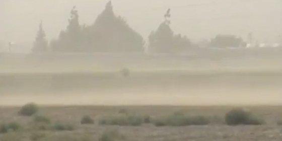 La fiebre del valle: una enfermedad incurable que viene con la brisa