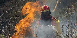 El incendio de Andratx no lo causó la quema de rastrojos...¡fue una barbacoa mal apagada!