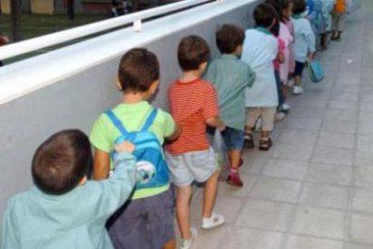 Sacan a los niños de la escoleta de Son Ferriol a causa de una plaga de pulgas