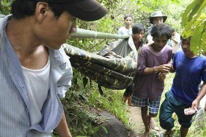 Un padre y su hijo se pasan cuarenta años viviendo en un árbol de la selva de Vietnam