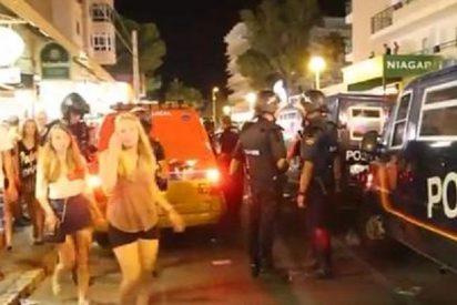 Los hoteleros quieren que los 'ejemplares' turistas de Playa de Palma sean ecológicos