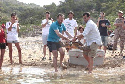 Bauzá suelta tortugas en la isla de Cabrera a la sombra de una 'pionera' energía solar