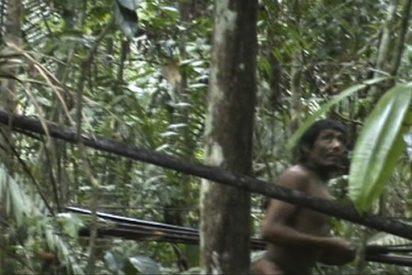 Las imágenes inéditas de los indios del Brasil que no quieren saber nada del 'hombre blanco'