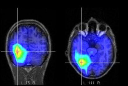 Sentimos empatía hacia las personas porque tenemos el cerebro programado