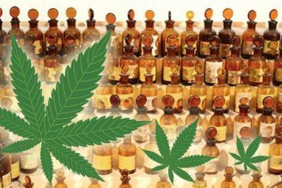 Ya puede pasearse dando el cante a porro de marihuana gracias a un nuevo perfume