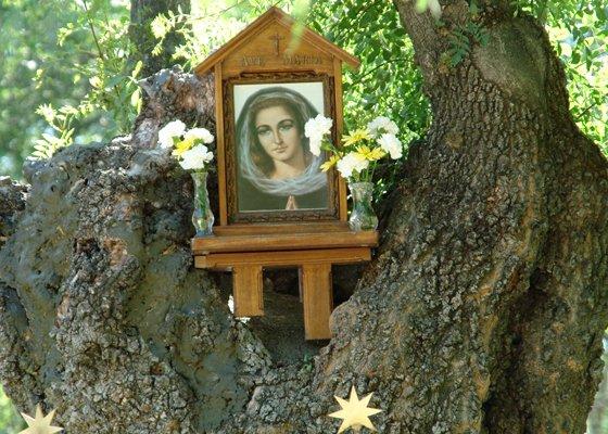 Eucaristía por el primer aniversario del fallecimiento de la vidente de El Escorial