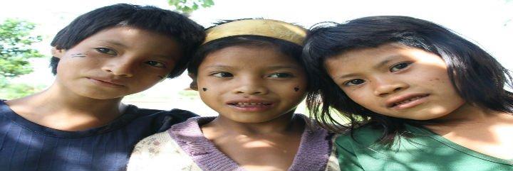 """""""Pueblos indígenas, construyendo alianzas: Un decenio para la acción y la dignidad"""""""
