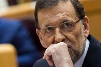 ¿Quiénes son los que conspiran contra Rajoy desde dentro del PP?