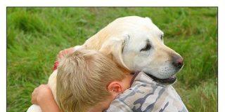 Vuela a su perra con una bomba para 'librarla' de la posesión diabólica