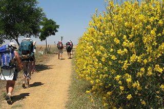 Camino de Santiago: ¿Cómo se entrena el peregrino y cuál es la forma física ideal?