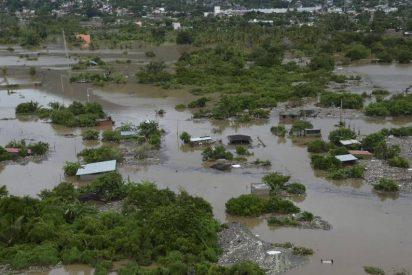 """El Papa, """"hondamente apenado"""" por las víctimas del huracán en México"""
