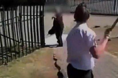 [Vídeo] Un alumno drogado le da de palos y patadas a su profesor durante una clase