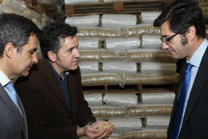 Romaní pone como ejemplo las microempresas para sortear la crisis