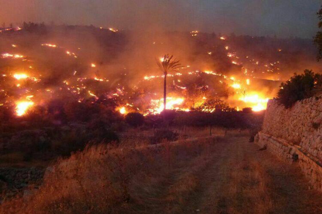 La 'bromita' de la barbacoa que provocó el incendio de Andratx nos cuesta 2,5 millones