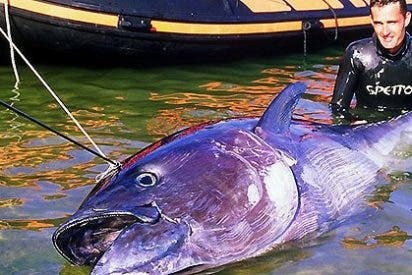 El Parlament aprueba la primera Ley de Pesca de Baleares y dice que el 'tamaño' no es importante