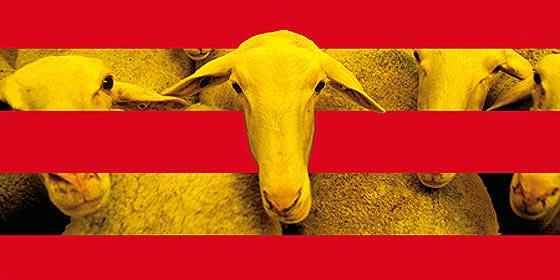 """Artur Mas: """"Dejad que los niños se acerquen a mi y a TV3... ¡para manipularlos!"""