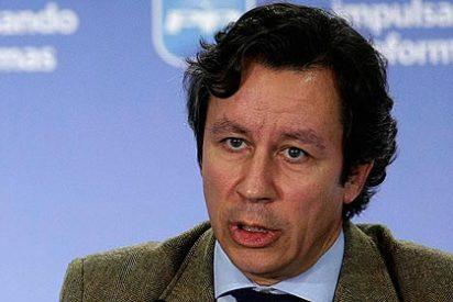 """Alcaldes del PP de Madrid, a Floriano: """"Según vamos, no nos vota ni mi mujer"""""""